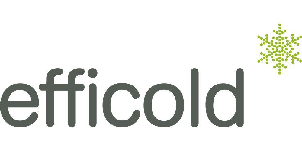 Logotipo efficold